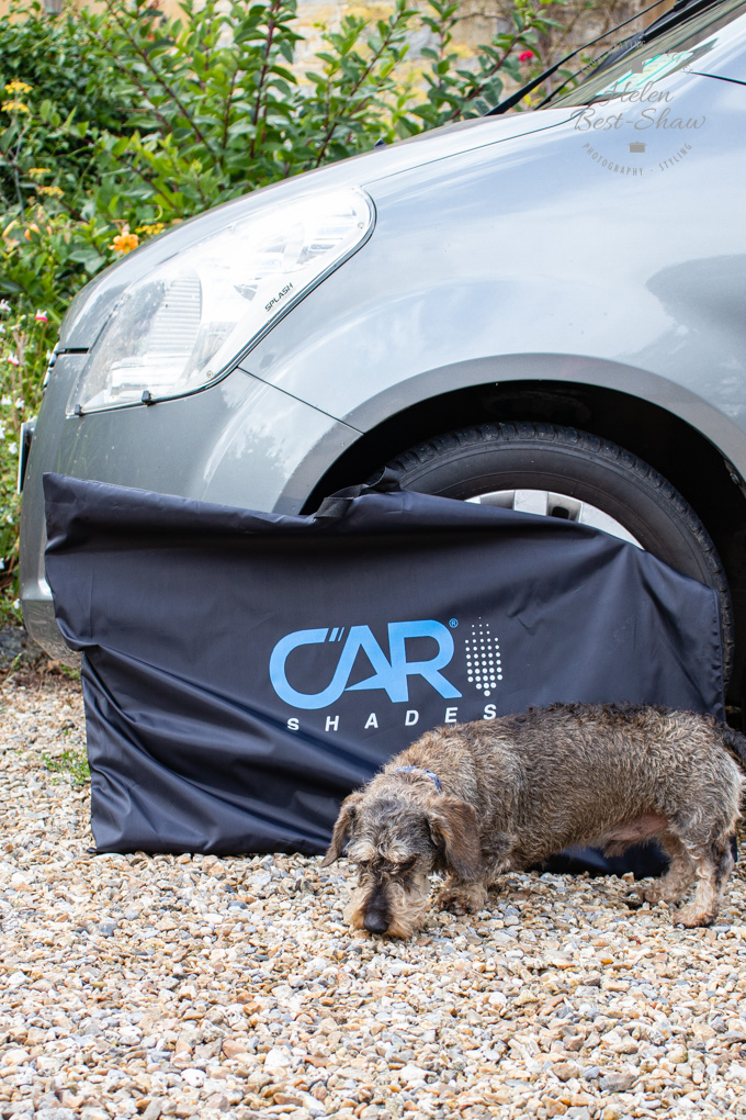 A carshades branded bag next to a silver car, with a miniature wire haired dachshund in front
